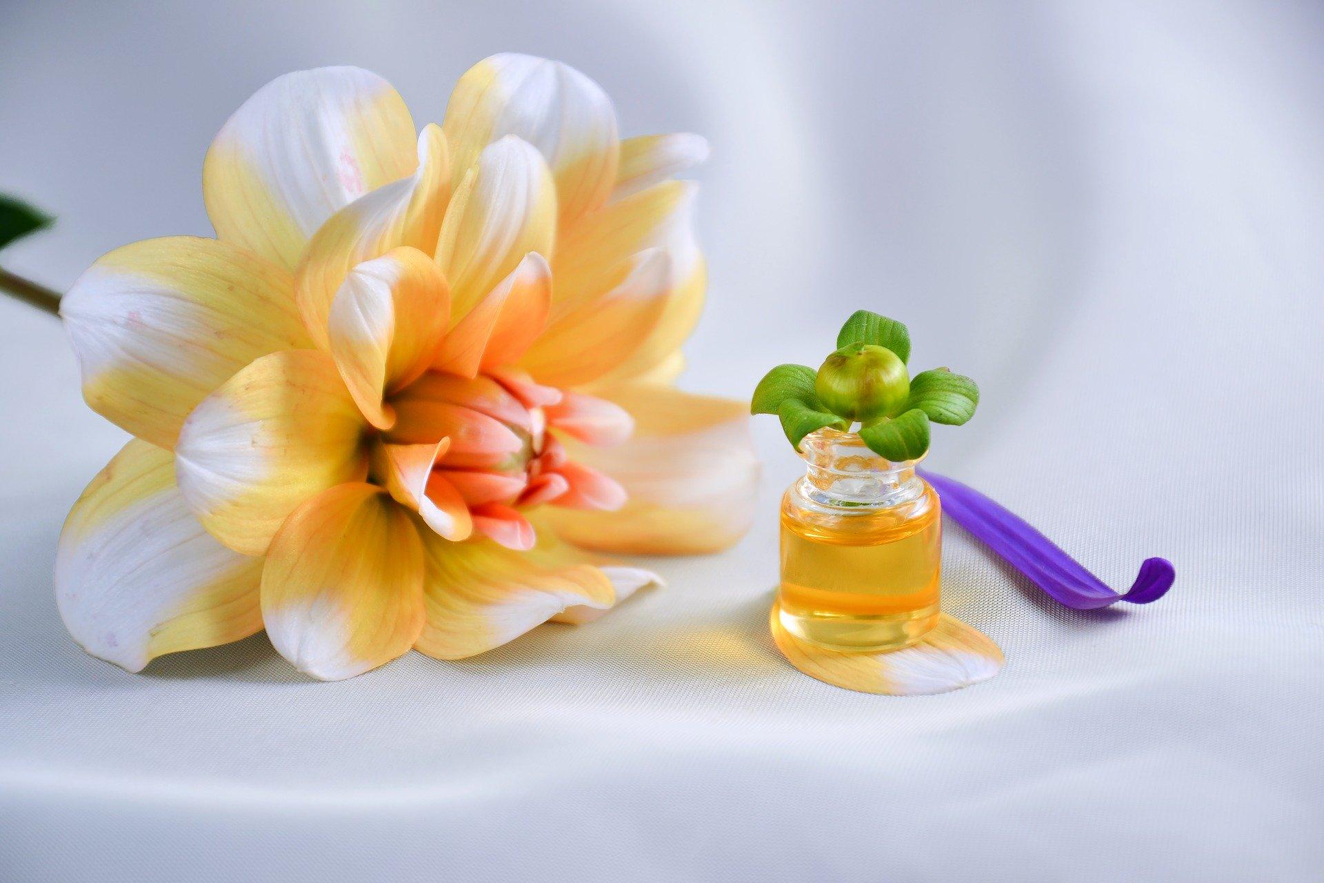 Photo of Karottenöl – das Beautytalent für Haut und Haar
